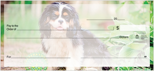 Cavalier King Charles Spaniel Checks