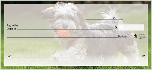 Havanese Checks