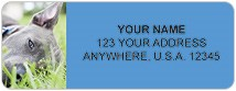 Pit Bull Address Labels