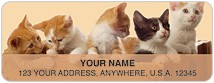 Precious Kittens Address Labels